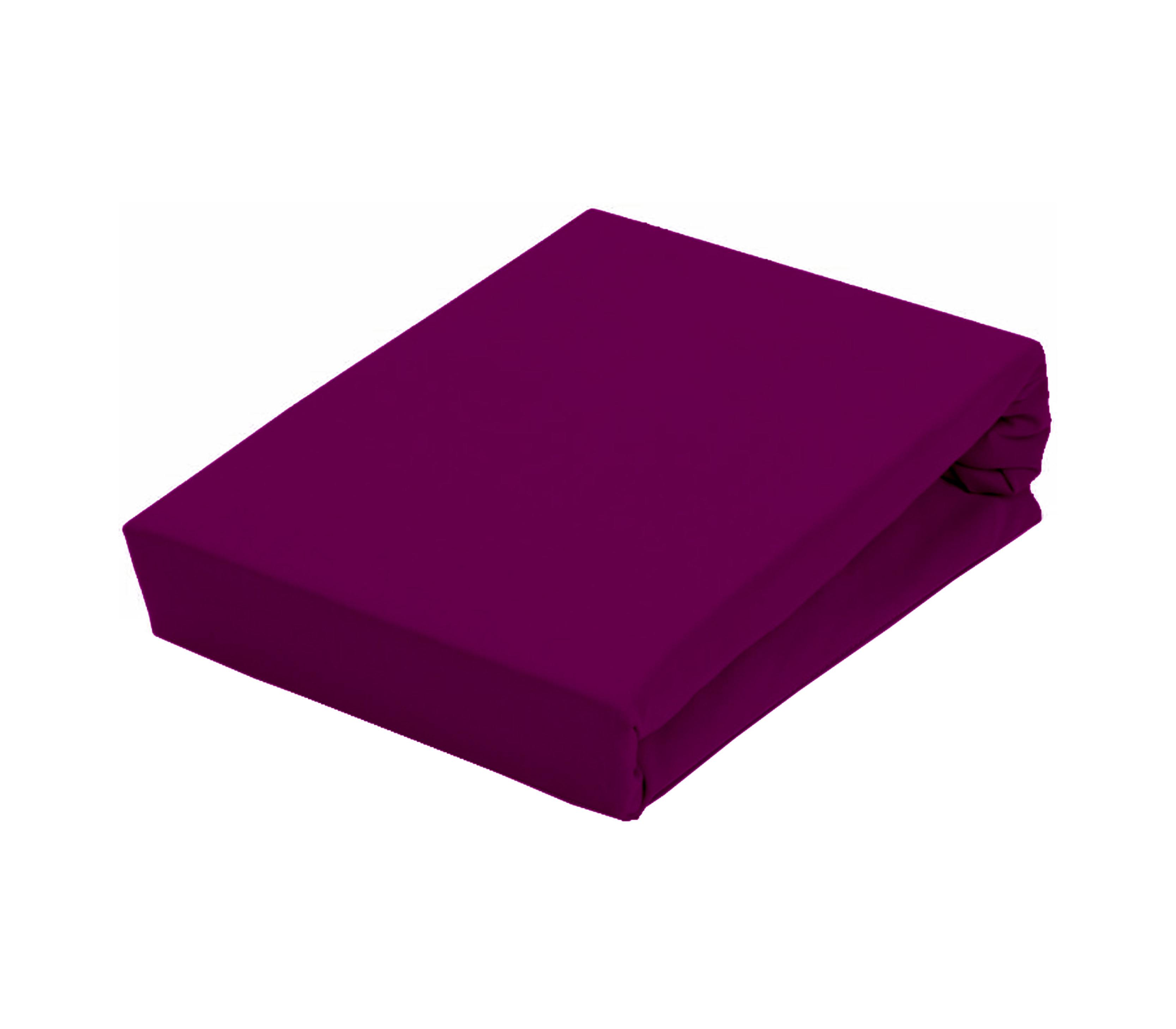 Aga Prostěradlo JERSEY 90x200 cm  Barva prostěradla: Tmavě fialová