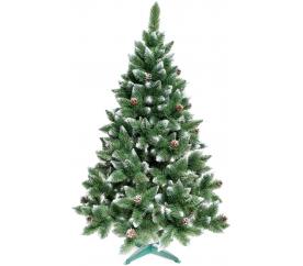 Aga Karácsonyfa fenyő 160 cm